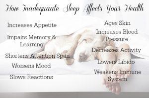 dog-sleep-with-wording